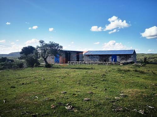 Campo Ganadero En Venta En  Maldonado, A 60 Km De Punta Del Este- Ref: 26296