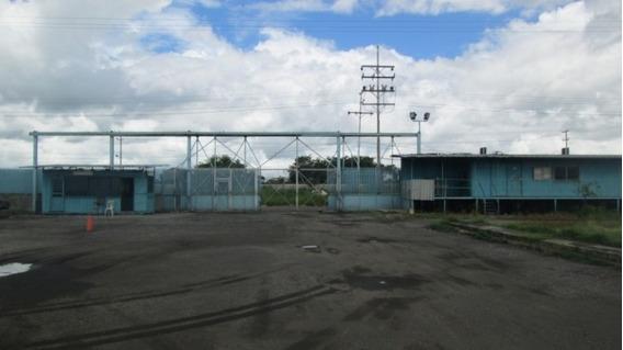 Terreno Industrial Con Galpón En Flor Amarillo