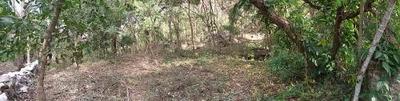 Terreno Panorámico En Venta, Tuxtla Gutiérrez