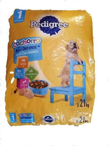 Pedigree Cachorro 21 Kg + Pipeta + Snack + Envío Gratis