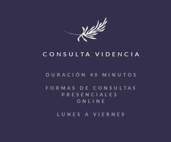 Consulta Videncia 40 Minutos