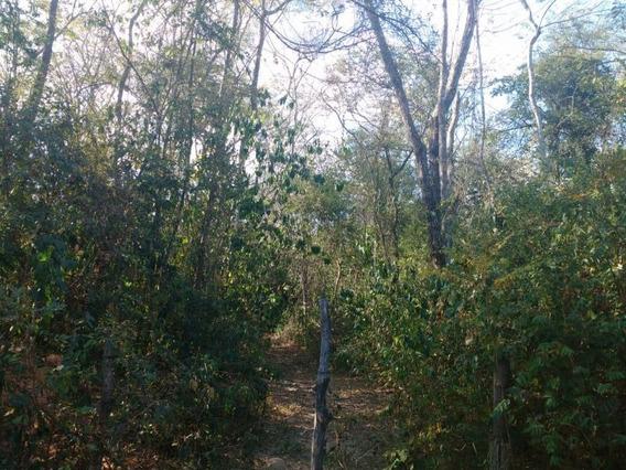 Sítio Com 235.000 M2 Em Florestal Mg- Área Com Muita Mata - Ideal Para Reserva Legal - Aceita Imóvel. - 113