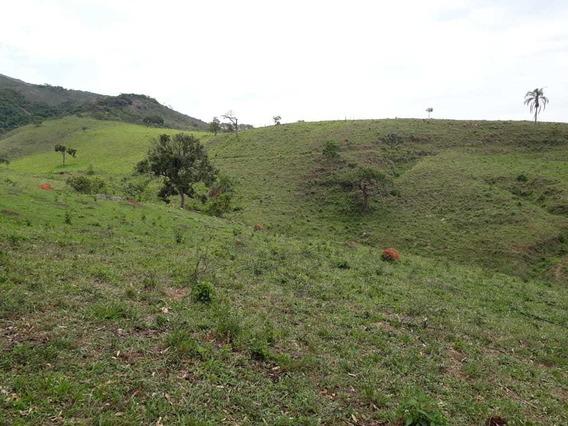 Sítio No Sul De Minas, Serra Da Mantiqueira , Com 68 Hectares - 865