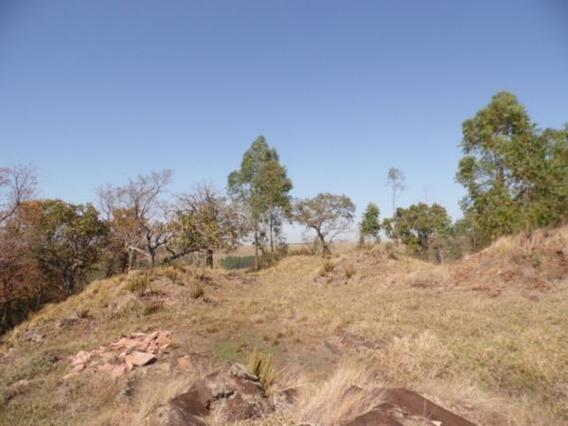 Venda De Rural / Sítio Na Cidade De Araraquara 7386