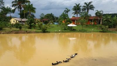 Sítio À Venda Em Miracatu Ideal Para Plantação E Criação De Animais, Excelente Localização, Topografia Plana. - 266 - 34050077