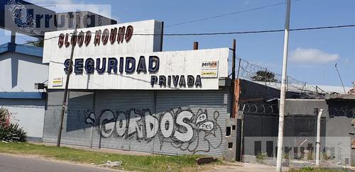 Local - Moreno