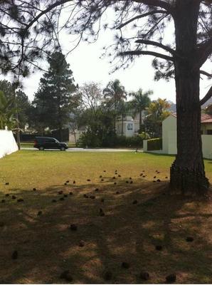 Terreno Em Alphaville, Barueri/sp De 0m² À Venda Por R$ 1.300.000,00 - Te184474