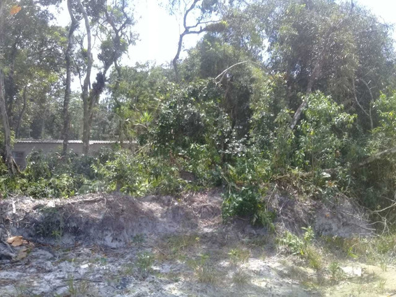 Vendo Terreno Em Itanhaém