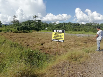 Venta Terrenos En Naranjillo, Tingo Maria