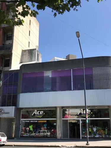 Imagen 1 de 27 de Oficina En Alquiler En La Plata