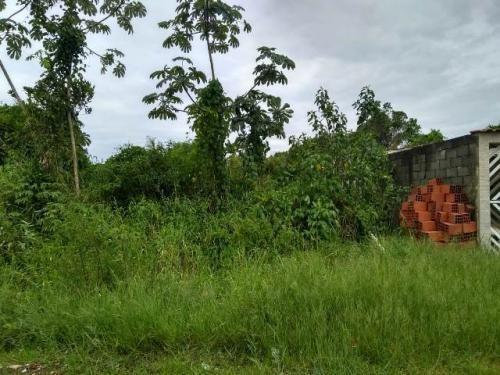 Terreno No Jardim Palmeiras, Em Itanhaém, Ref. 5189 M H