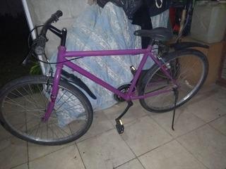 Bicicleta Mtb Vieja Restaurada