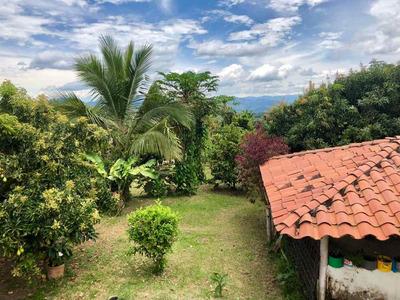 Venta Finca En Quimbaya, Quindio