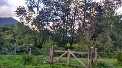 Terrenos En Sector Las Molidas, Comuna De Lago Ranco