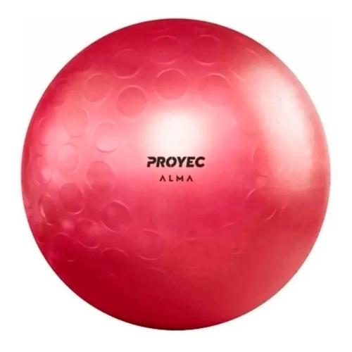 Pelota Esferodinamia 65 Cm Fit Gym Ball Pilates Yoga Proyec