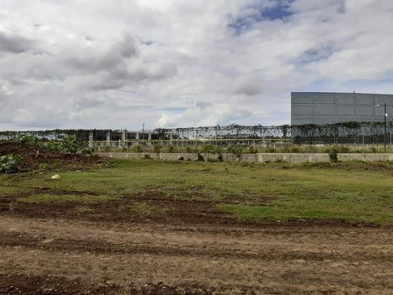Solares Residenciales En Boca Chica