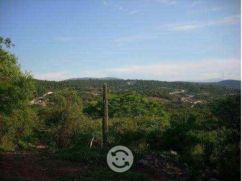 Terreno En Ticuman, Campo Los Sauces
