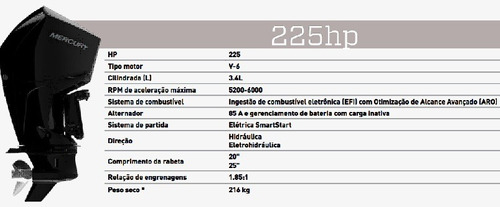 Motor Novo 225hp Xl Efi V6 4 Tempos