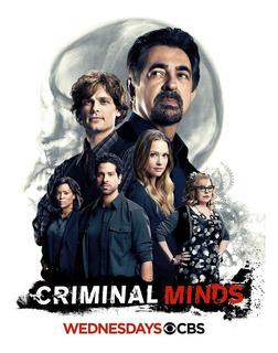 Série Criminal Minds - 1ªa14ª Temporada Dublado
