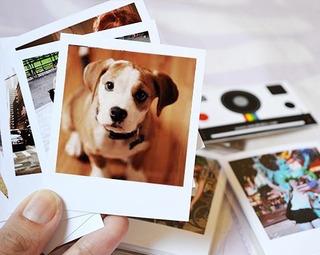 Revelar 12 Fotos 7x10 Formato Polaroid Frete Grátis
