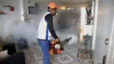 Fumigacion Y Eliminacion De Zancudos, Moscas, Mosquitos
