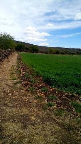 Terreno Por La Esperanza Colón Qro. 16 Has