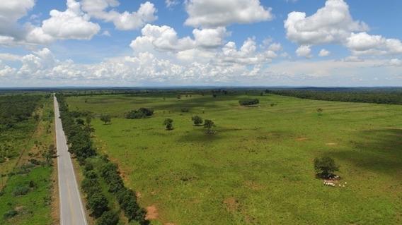 Fazenda A Venda Em Araguaína - To (pecuária) - 1187