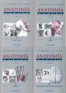 Anatomía Humana - Rouviere (4 Tomos) 11va Ed.