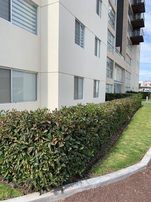 Venta O Renta Departamento Habitarea Santa Fe Juriquilla