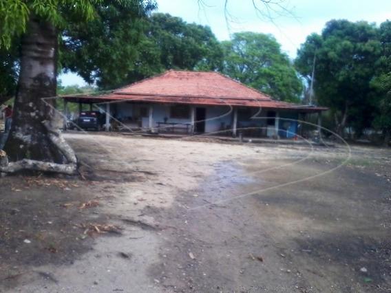 Fazenda Para Venda - 020626.08