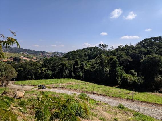 Lançamento Na Cidade De Ibiúna-sp. Gh