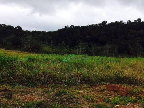 Terreno À Venda, 1372 M² Por R$ 490.000,00 - Parque Residencial Jequitibá - Jacareí/sp - Te0156