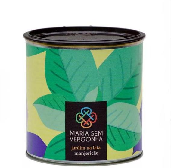 Kit Para Jardinar Manjericão