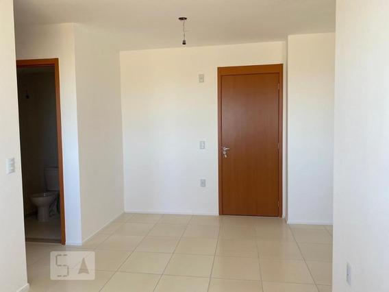 Apartamento Para Aluguel - Jardim Atlântico, 2 Quartos, 50 - 893102538