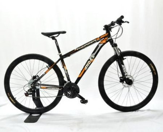 Bicicletas Andes Thunder R29 27v