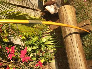 Arco E Flecha Longbow Tradicional Inglês