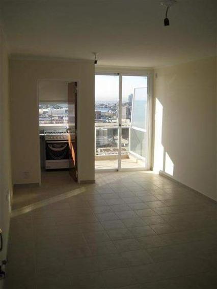 B° Cofico - Depto De Categoría Externo De 1 Dormitorio Amplio Con Balcón, Patio Y Terraza Amplia Con Asador Y Solarium