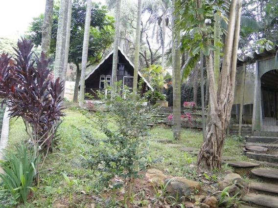 Terreno-são Paulo-horto Florestal | Ref.: 169-im166941 - 169-im166941
