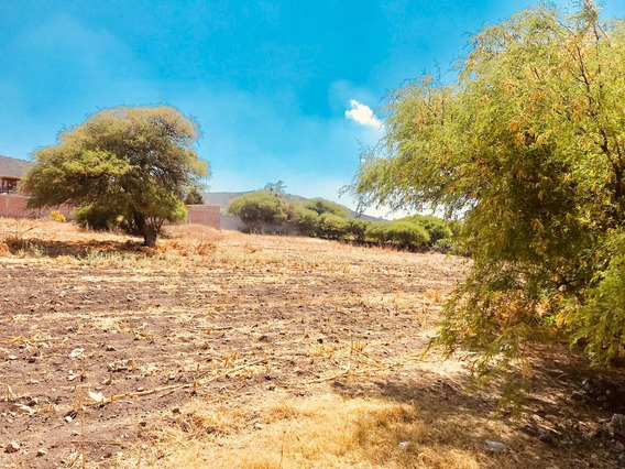 Venta De Terreno En La Presa Santa Rosa Juriquilla