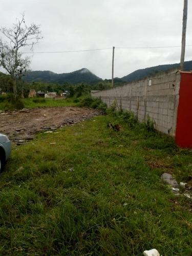 Terreno Venda Caraguatatuba - Sp - Pegorelly - 3620