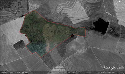 Sitio 30ha - Taquaritinga/sp - Fazendo Gloria - Gleba2