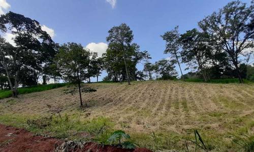 Terreno No Aldeia Do Vale - 1530
