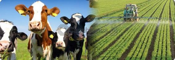 Linda Fazenda Em Sete Barras/sp/20km Do Alfalto/120alqueires/toda Plana/ótimo Para Pecuária E Agricultura - Fa0037