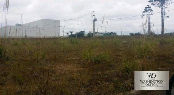 Terreno À Venda, 360 M² Por R$ 140.000,00 - Afonso Pena - São José Dos Pinhais/pr - Te0064