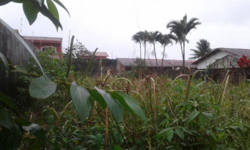 Imagem 1 de 2 de Lote No Litoral Medindo 480 M², Em Itanhaém/sp 6150-pc