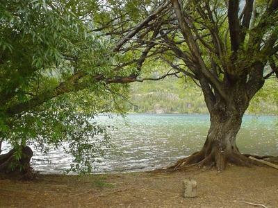 Terrenos O Lotes Venta Lago Epuyén