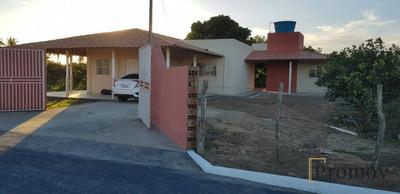 Sitio No Treze, Com Cisterna, Todo Plantado Com Laranja. - Ch0016