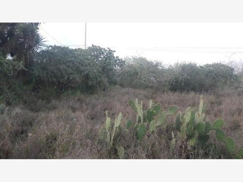 Imagen 1 de 12 de Terreno En Renta Union Agrop Lazaro Card Del Norte