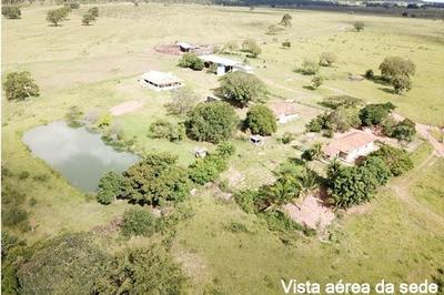 Fazenda A Venda Em Corguinho - Ms (pecuária) - 1104