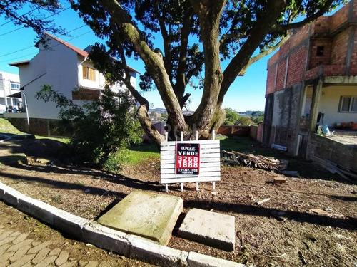 Terreno Em Campo Novo - Lu431204